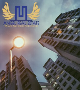 Angel Real Estate Logo Design
